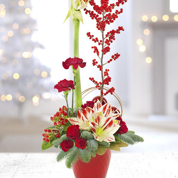 Wedding Flowers Cheltenham: Cheltenham-Flowers-Candy Cane